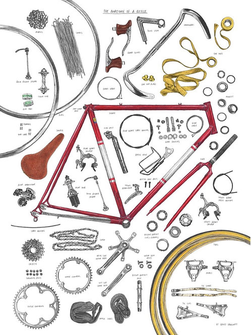 The Anatomy of a Bicycle Print