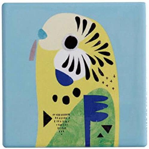 Budgerigar Coaster