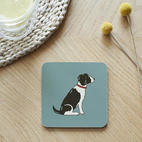 Springer Spaniel Black White Coaster