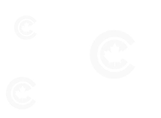 CC网站 service用图背景2.jpg