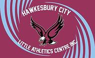 HCLA Banner Logo.jpg