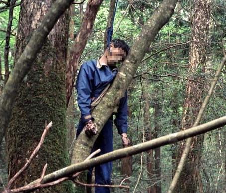 AOKIGAHARA: La foresta dei suicidi