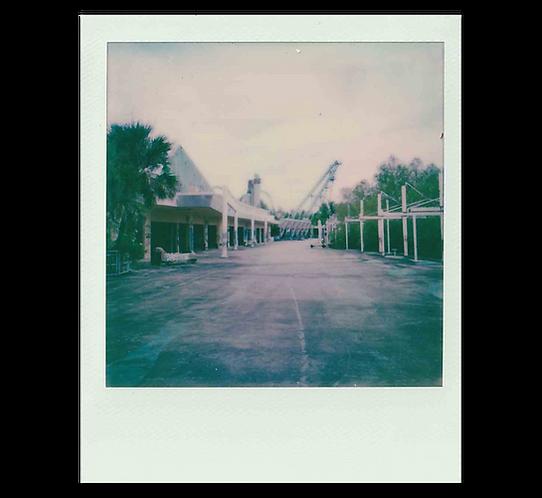 Polaroid - Distant Coaster