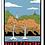 Thumbnail: River Country Postcard