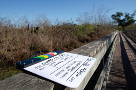 Filming In The Swamp