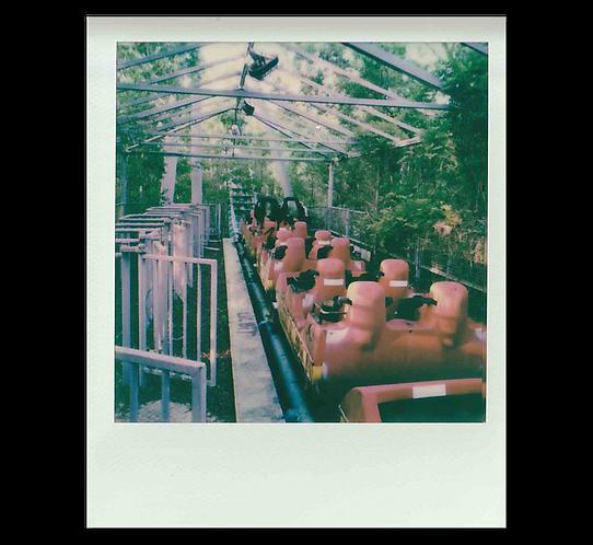 Polaroid -The Station