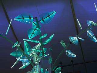 Wondertree-T2-by-Cinimod-Studio---6461-W