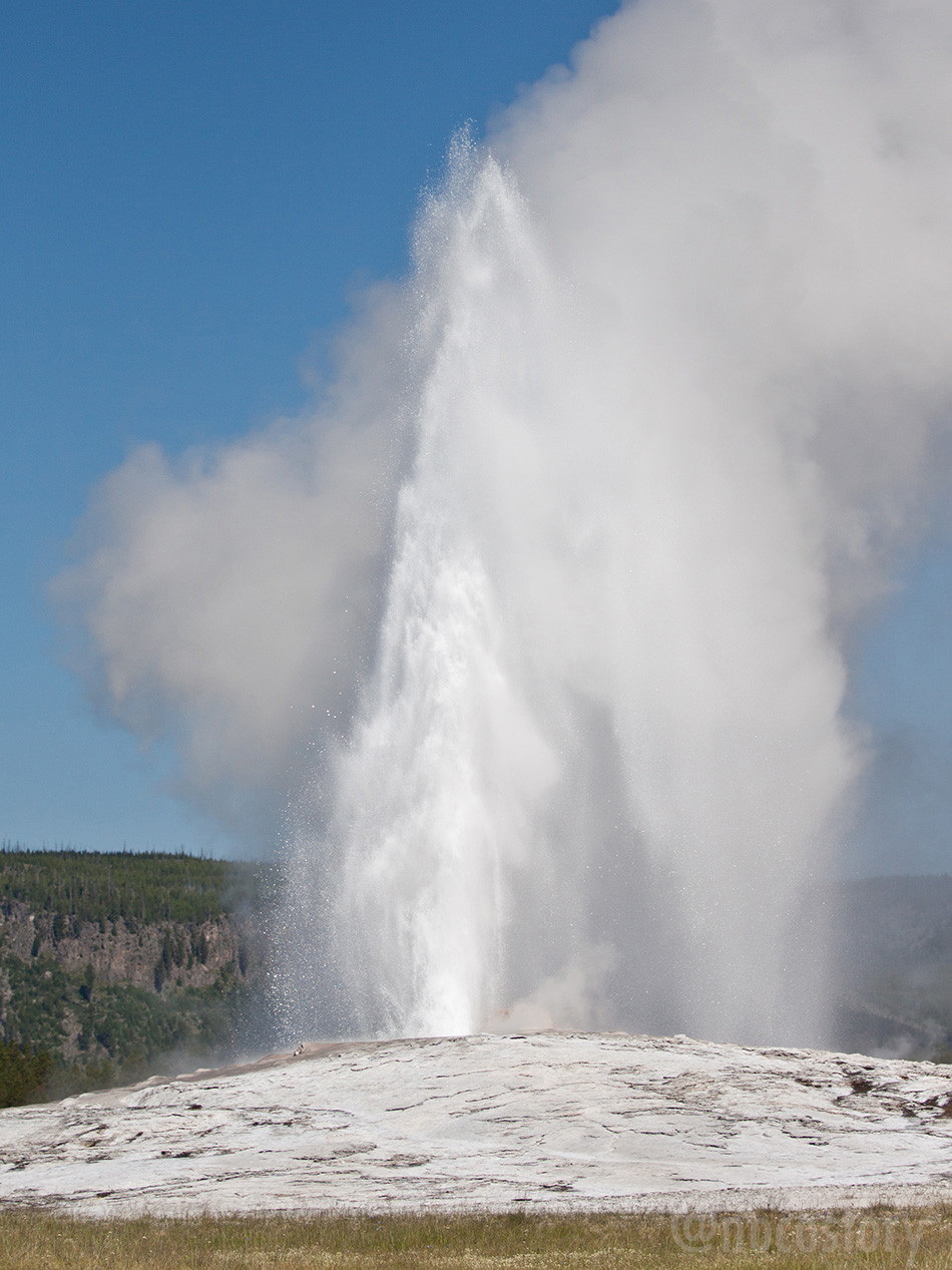 Ensley Yellowstone geyser