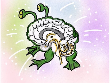 """95% chance we have a """"frog brain"""" when it concerns change."""