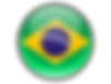 brazil_round_icon_256.png