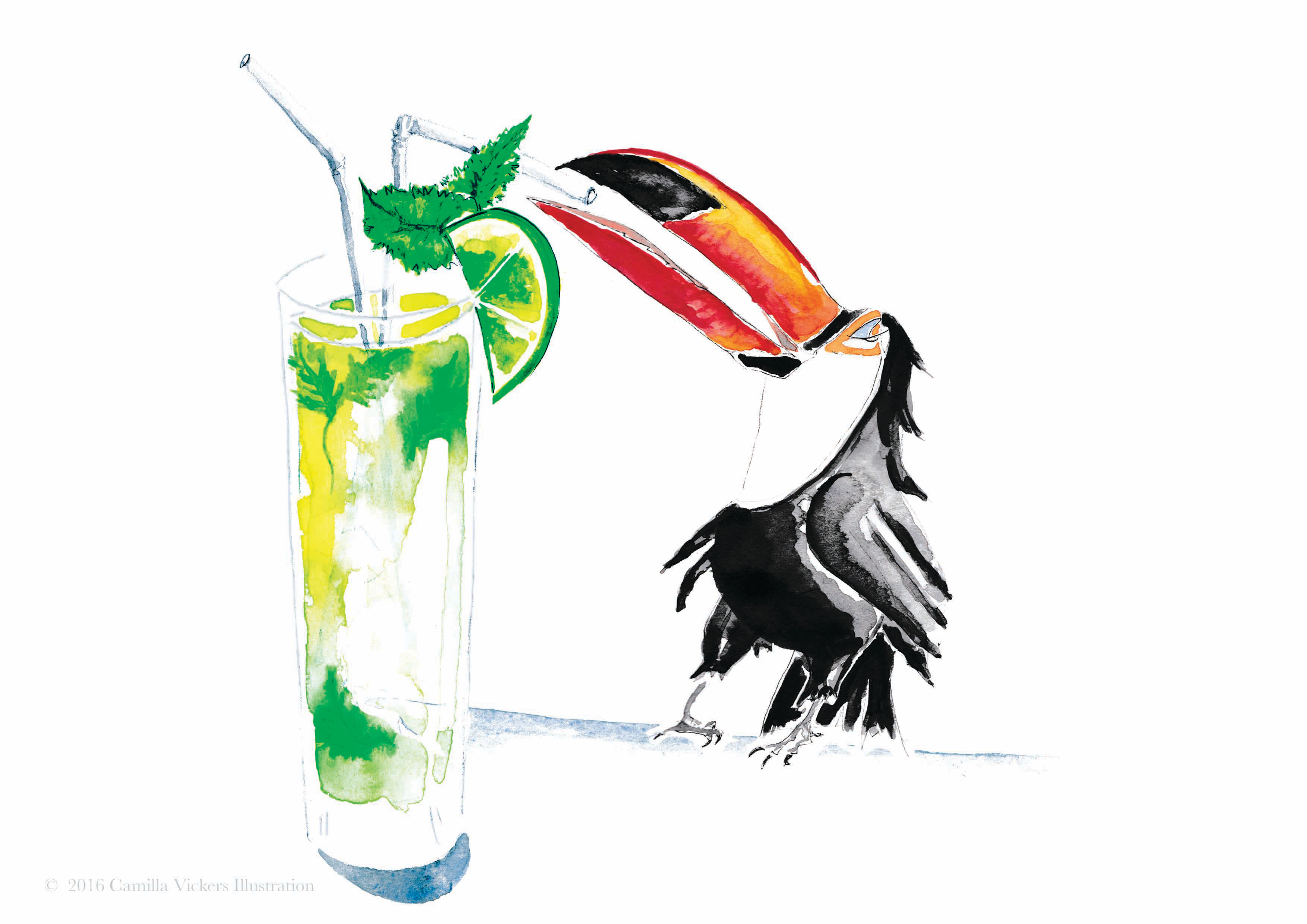 Tonic the Toucan