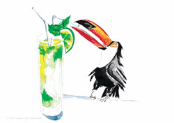 Tonic the Toucan