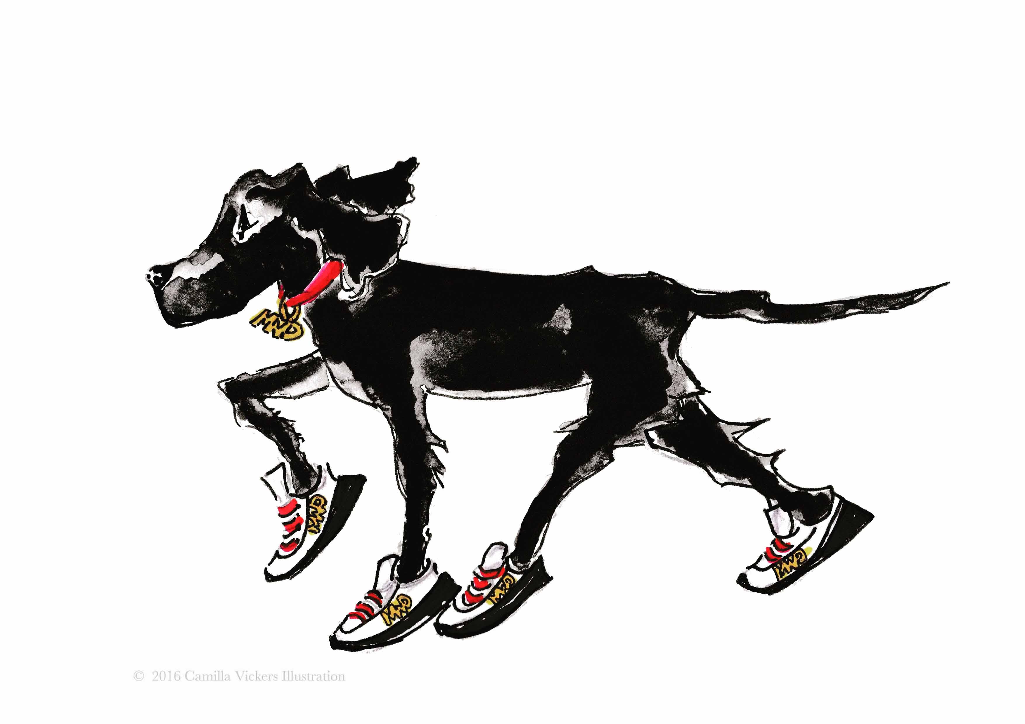 'My Wander Dog'