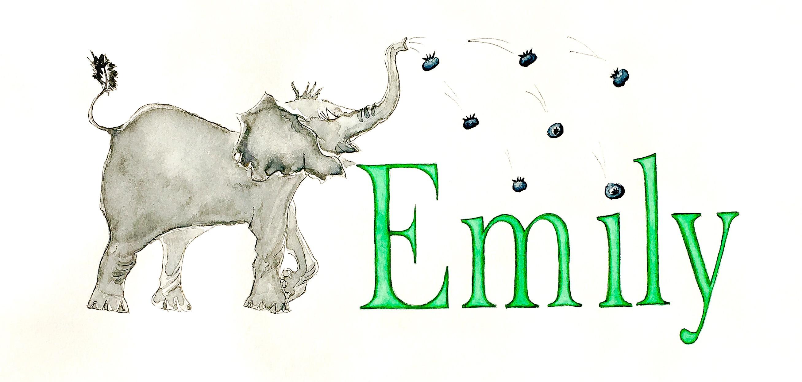 Emily elephant with blueberries
