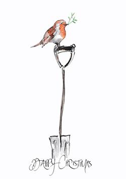 Mistletoe Robin