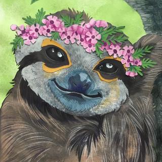 Crowned Sloth