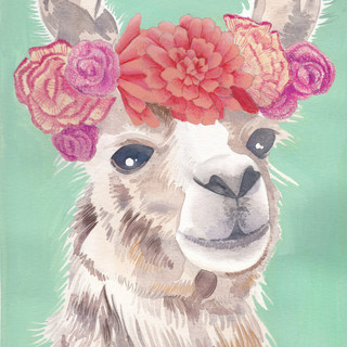 Crowned Llama