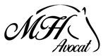 MH_logo_2020 petit.png