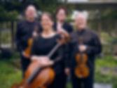 CCP Quartet 3500 medium.jpeg