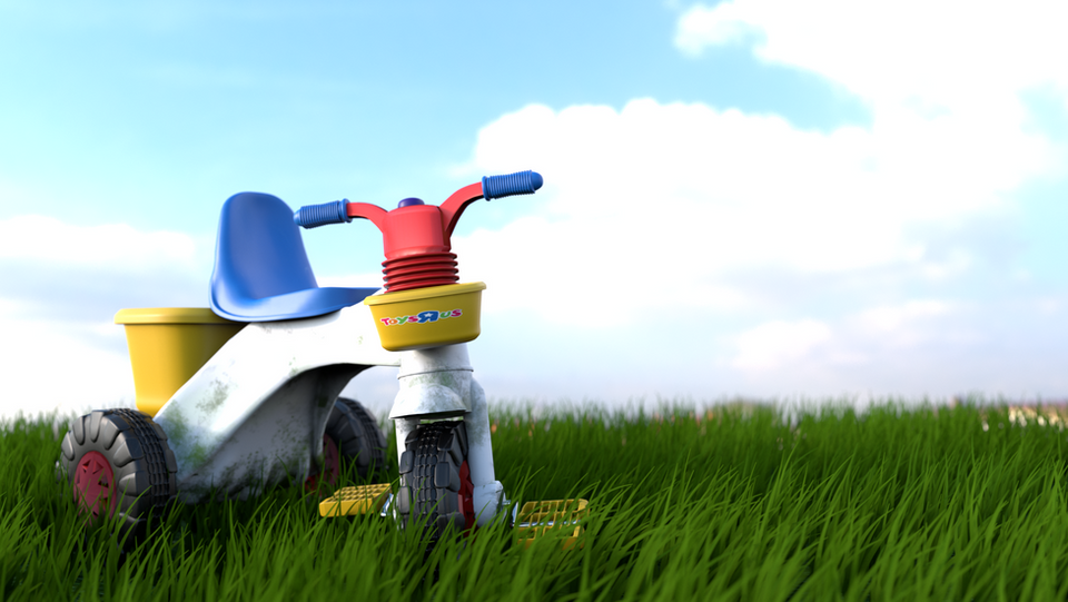 Tricycle on a grassland. 2018.