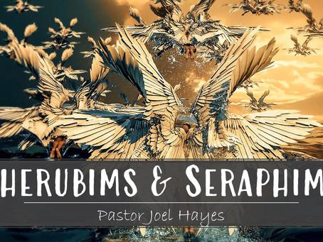 Cherubims & Seraphims