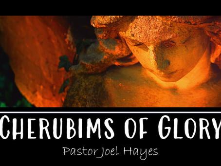 Cherubims of Glory