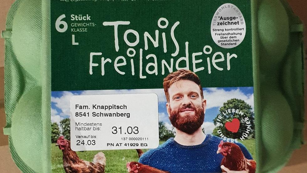 TONIS Freilandeier L 6Stk.