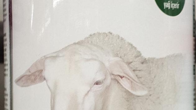 GAZI Schafskäse 800g