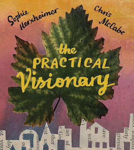 The Practical Visionary by Sophie Herxheimer and Chris McCabe