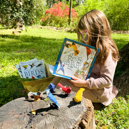 Creative Play: All About Birds