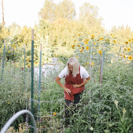 Garden Spotlight: Cynthia Stringham of Melon Monologues