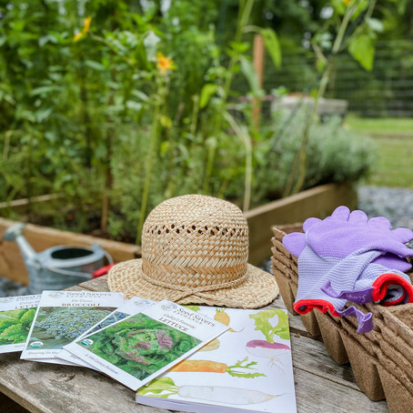 Planning Our Fall Garden