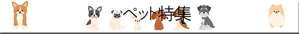 pet-logo2.jpg