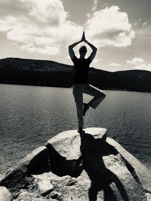 Yoga Haltung Vriksasana