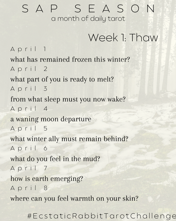 april daily tarot card pull challenge we