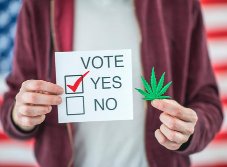 The Happy CannaDate: VOTE LIKE YOUR LIFE DEPENDS ON BECAUSE IT DOES!