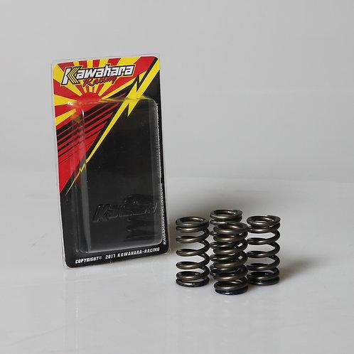 KWR Valve Spring JP For Mx-King/R15