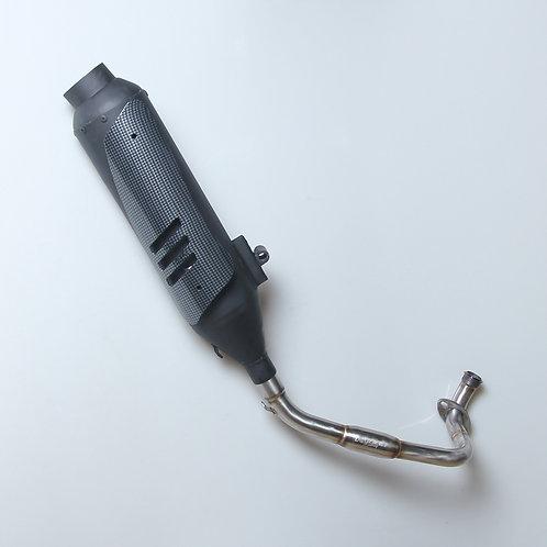 Exhaust Standar Racing Vario FI + Carbon
