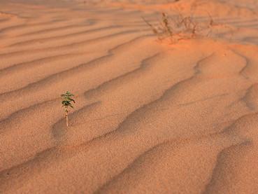 Tempestade de areia do Saara chega até a Suíça