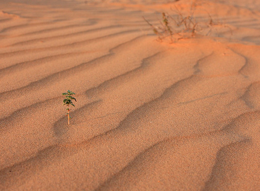 """Desert Sand"" a Poem About the Storms of Life"