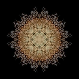 cactus mandalas - 109.jpg
