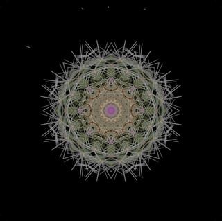 cactus mandalas - 129.jpg