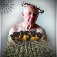 cactus portraits - 4.jpeg