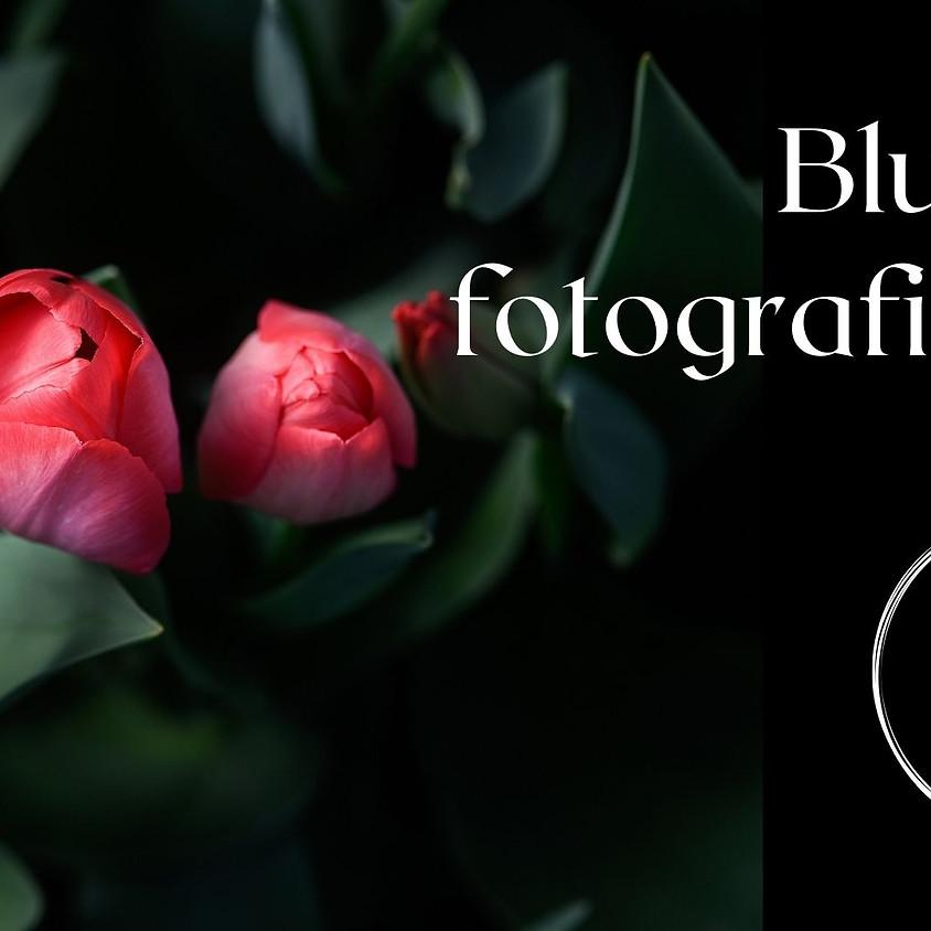 ONLINE Workshop : Blumen fotografieren