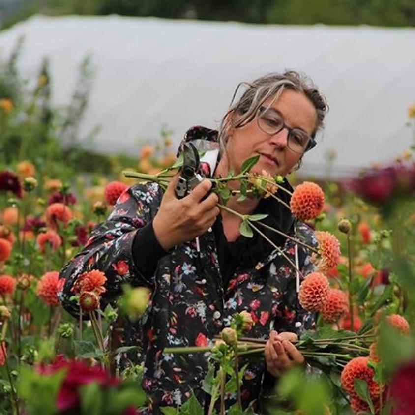 GANZTAGESKURS : Bio-Schnittblumen aus dem Garten, Teil 1 - Anfänger