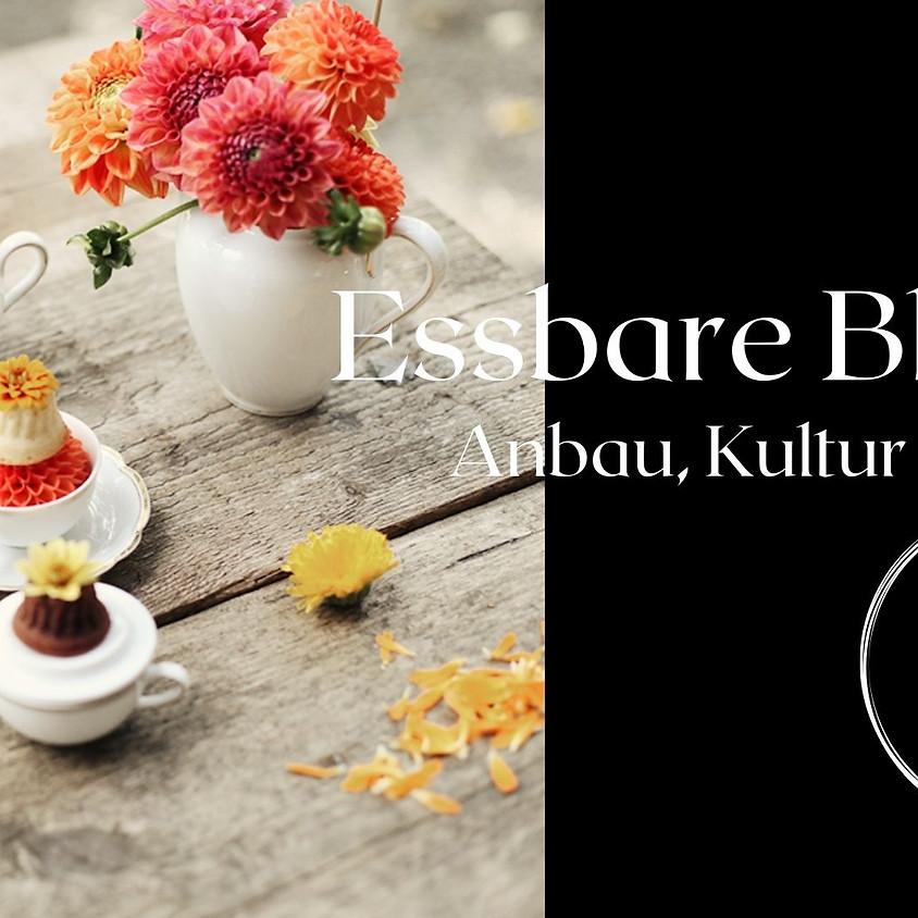 ONLINE Workshop : Essbare Blüten (1)