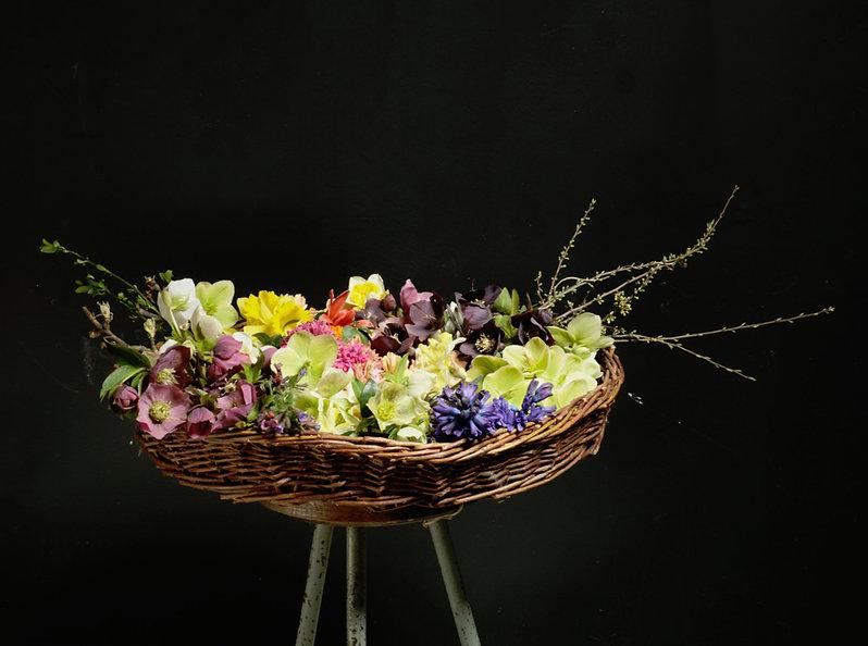 ein Jahr in sen Bio Blumen Webinar Reihe