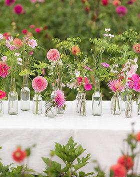 lumikki photography farm to table detail