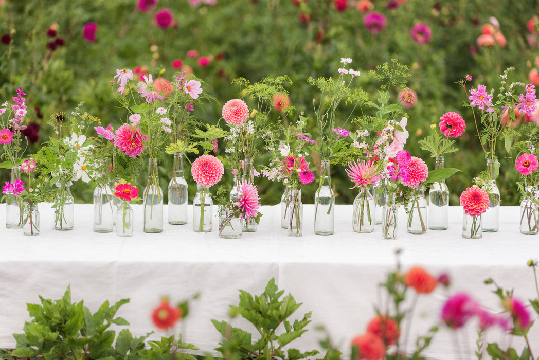 Schnittblumen aus dem eigenen Garten.jpg