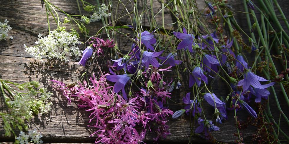 Ganztagesseminar : Wilde Werkstücke aus der Blumenwiese